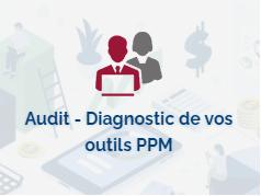 Audit Diag Ppm